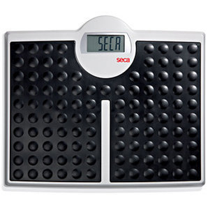 Seca Robusta 813 Electronic Scale